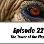 220: The Tower of the Elephant